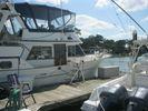 Albin 43 Trawler Sundeckimage