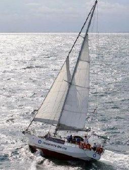 Caroff 47  image