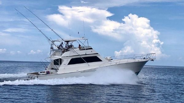 Viking 58 Convertible