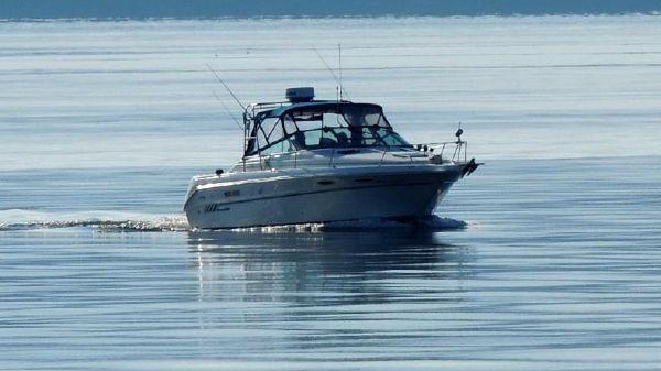 Sea Ray Weekender