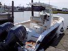 Sea Fox 266 Commanderimage