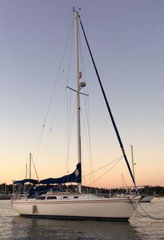 Catalina 36 MK I Tall Rig image