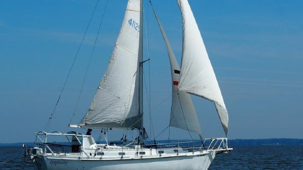 Ted Brewer 34'