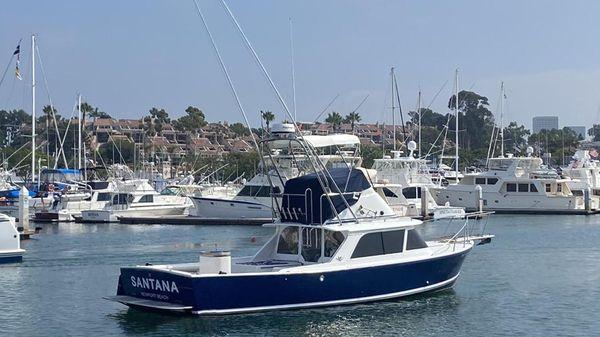 Bertram Palm Beach Edition