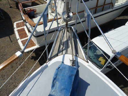 Seafinn 411 image