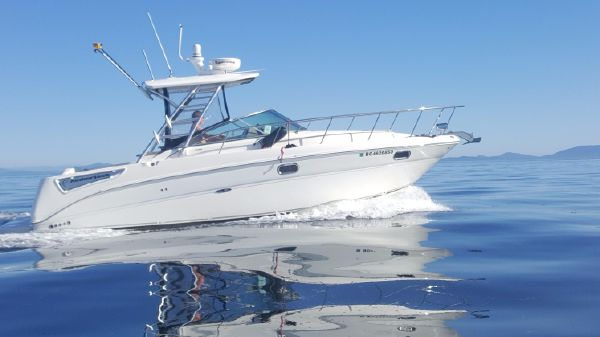 Sea Ray 290 Amberjack 290 Amberjack