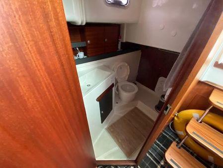 Delphia Escape 1050 image