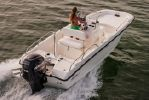 Boston Whaler 170 Dauntlessimage