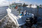 Boston Whaler 315 Conquestimage
