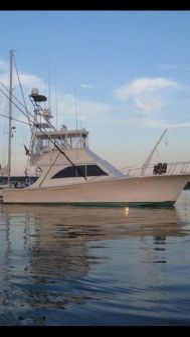 Jersey 42 Convertible Sportfisherman image