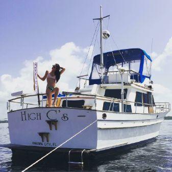 Albin 43 Trawler image