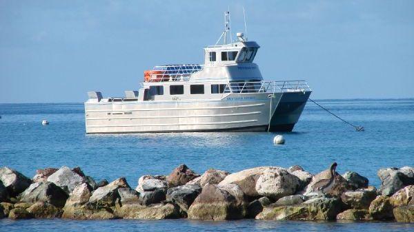 Armstrong Marine Catamaran At her mooring