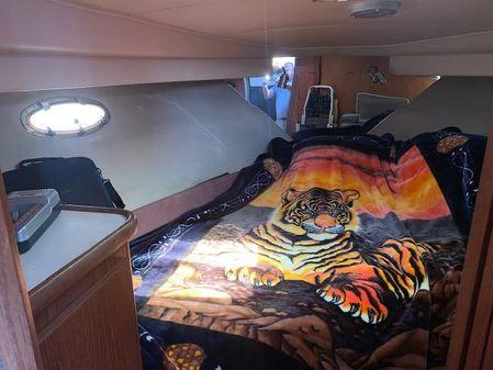 Carver 33 Aft Cabin image
