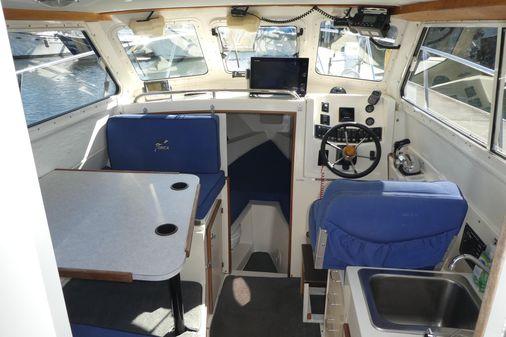 Skagit Orca 24 image