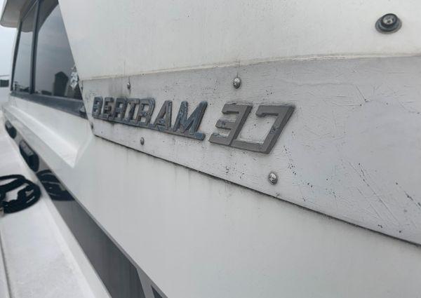 Bertram 37 Convertible image