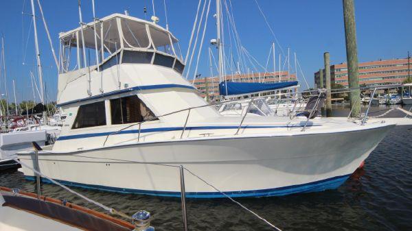 Viking Sport Cruisers Convertible