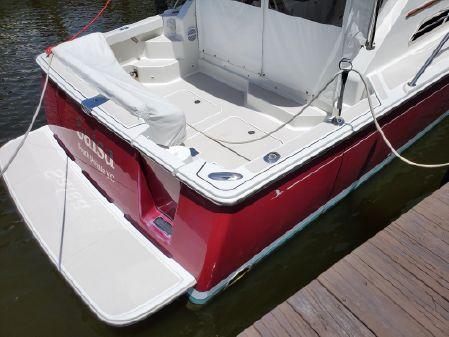 Back Cove 33. image