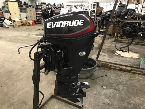 Evinrude E25DPGLAF