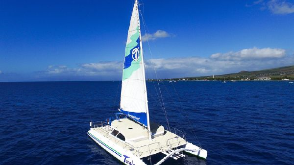 Custom 49 pax Day Charter Catamaran