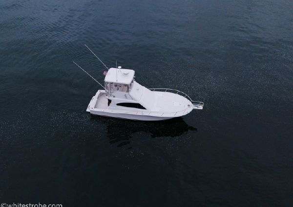 Luhrs Convertible image