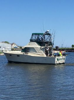 Chris-Craft Sportfish image