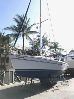 Catalina 375 image