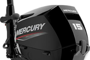 Mercury Fourstroke 15 hp EFI