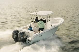 Sea Hunt Gamefish 25 - main image