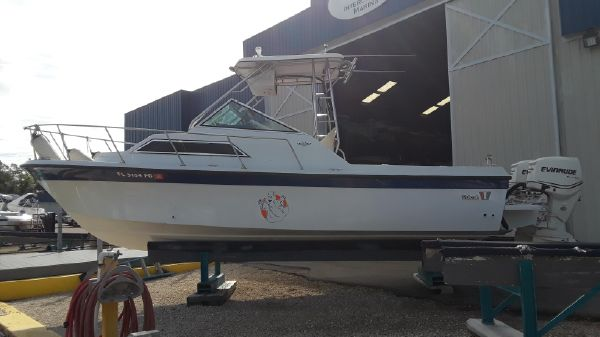 Wellcraft 250 Sportsman
