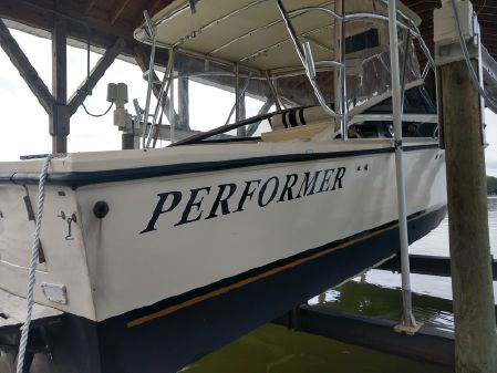 Performer 32 image