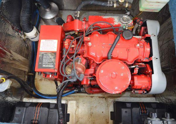 Bluewater 43 Coastal Cockpit Cruiser image