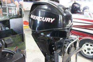 Mercury F25ELPT