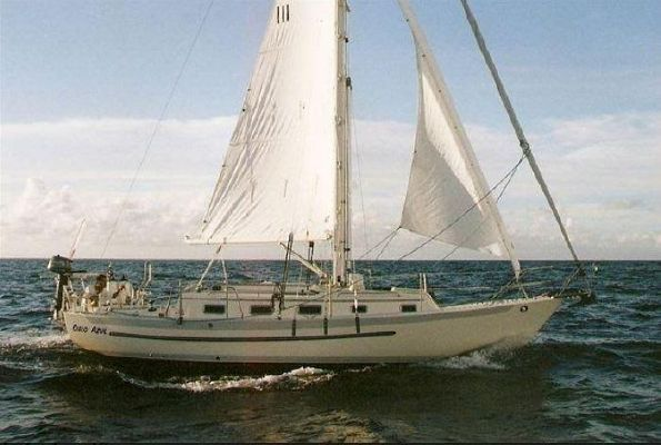 Pacific Seacraft 31 - main image