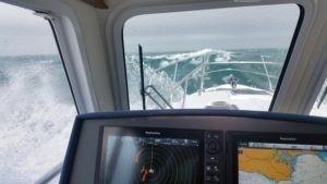 Seaward Nelson 42 image