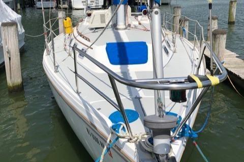 Catalina C 34 image