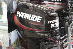 Evinrude E25DPGLAFE