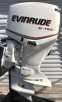 Evinrude E90DSL image