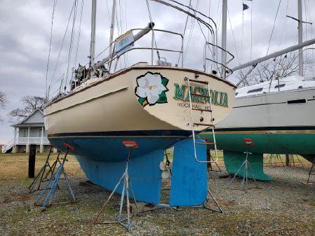 Island Packet 35 image