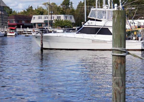 Viking 45 image
