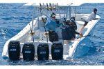 Yellowfin 42image