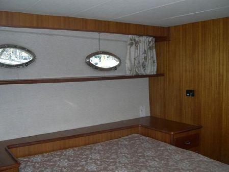 Custom Tania 47 image