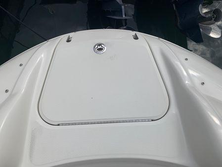 Sea Ray 240 Sundeck image