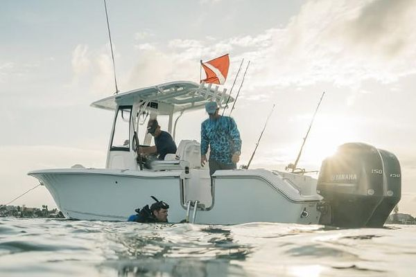 Sea Hunt Gamefish 25 - main image