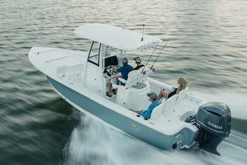 Sea Hunt BX 25 FS - main image