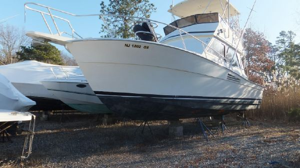 Viking 35 Convertible w 375 Cat's