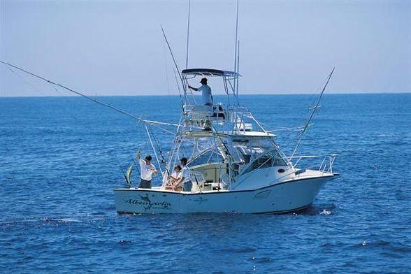 2005 Albemarle 320 Express Fisherman