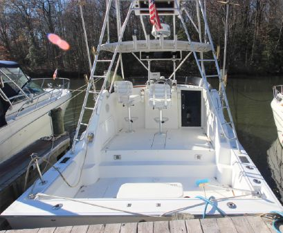 Luhrs 290 Express Sportfish w/Tower image