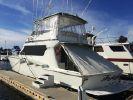 Hatteras Convertible 58'image