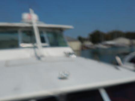 Bertram 38 Motor Yacht image