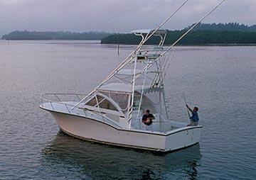 Carolina Classic 32 image